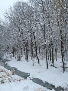 snow blog post
